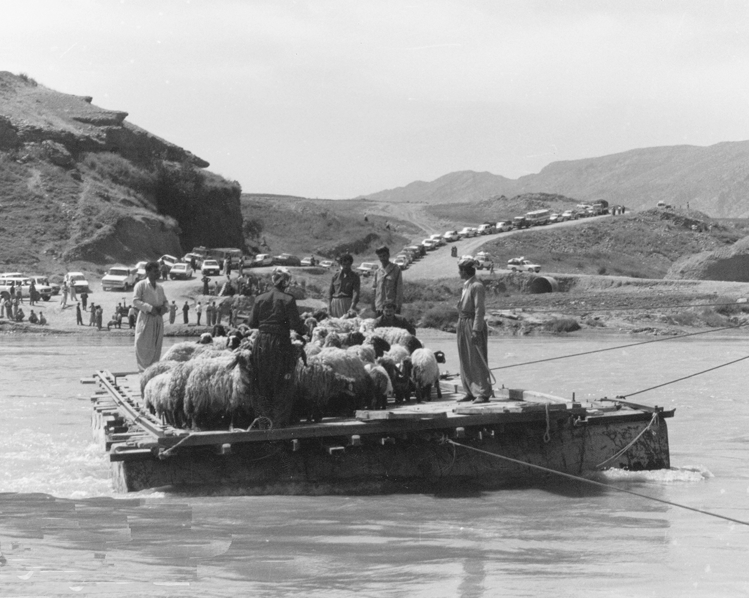 Kurdish sheep raft on river small