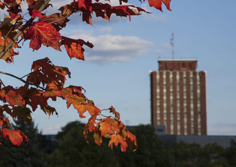 The Library Tower is pictured with autumn foliage in the foreground